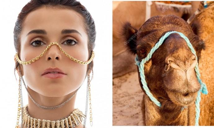 Сати Казанова выбрала для себя стиль «верблюжий гламур»