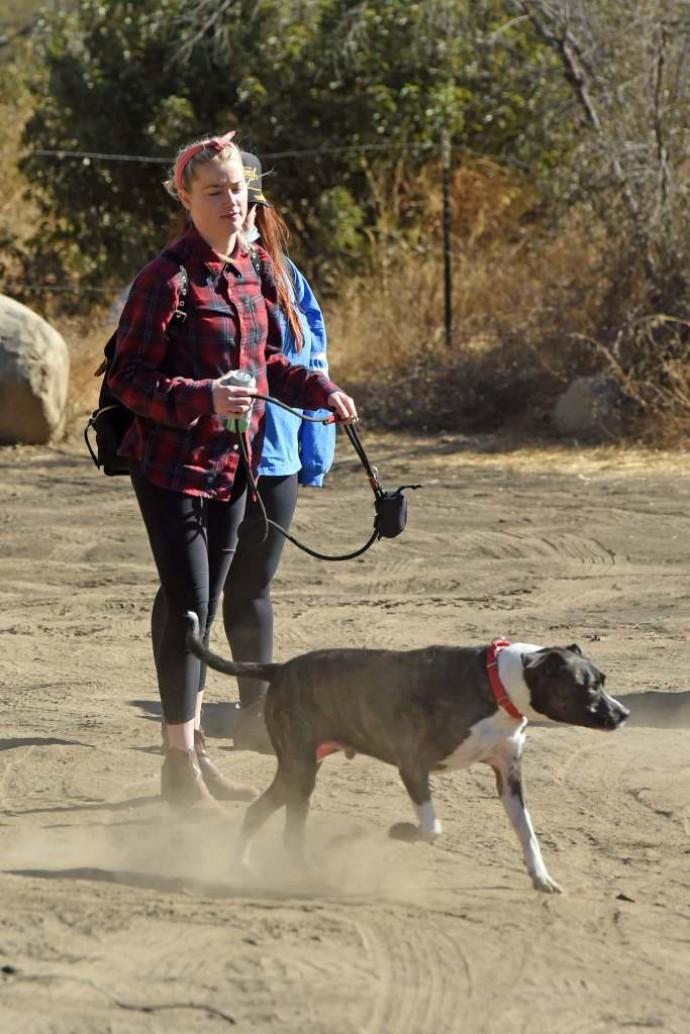 """Эмбер Хёрд в стиле """"ковбой гёрл"""" отправилась на прогулку с подругой и собакой"""