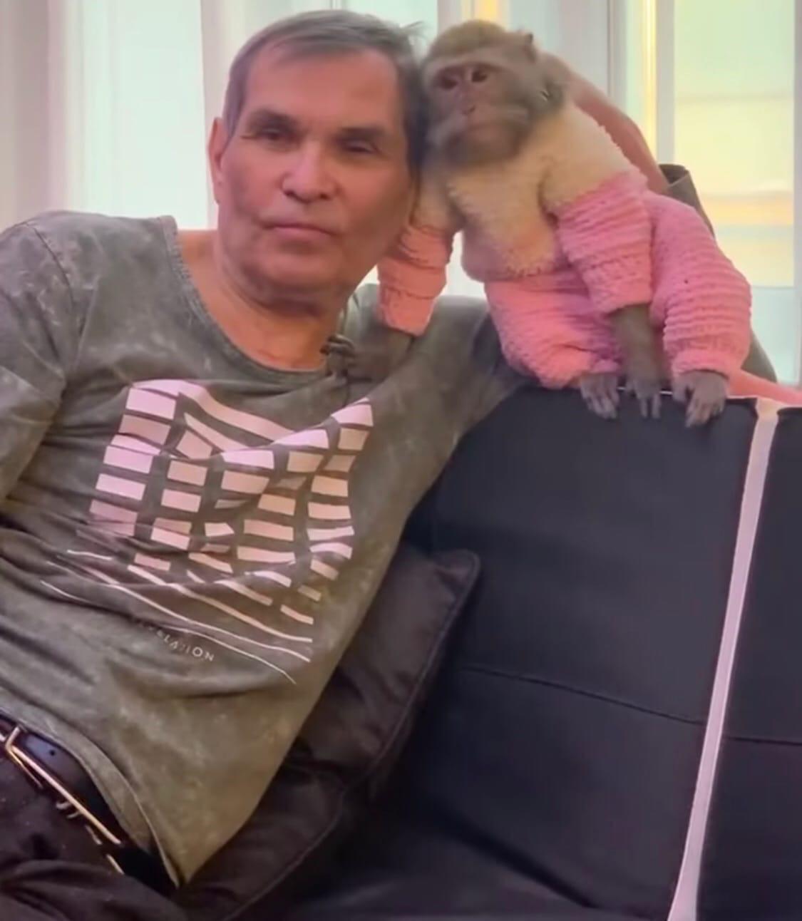 Бари Алибасов оказался в больнице из-за обезьяны