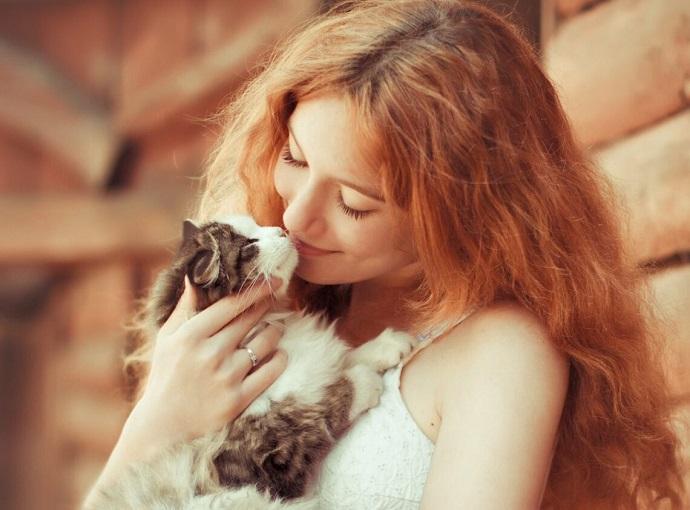 Фото с котом повышает шансы познакомиться – правда или вымысел?